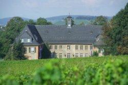 >EBS Business School MBA Program, Germany