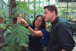 BSc Program on Molecular Ecosystem Sciences, University of Göttingen